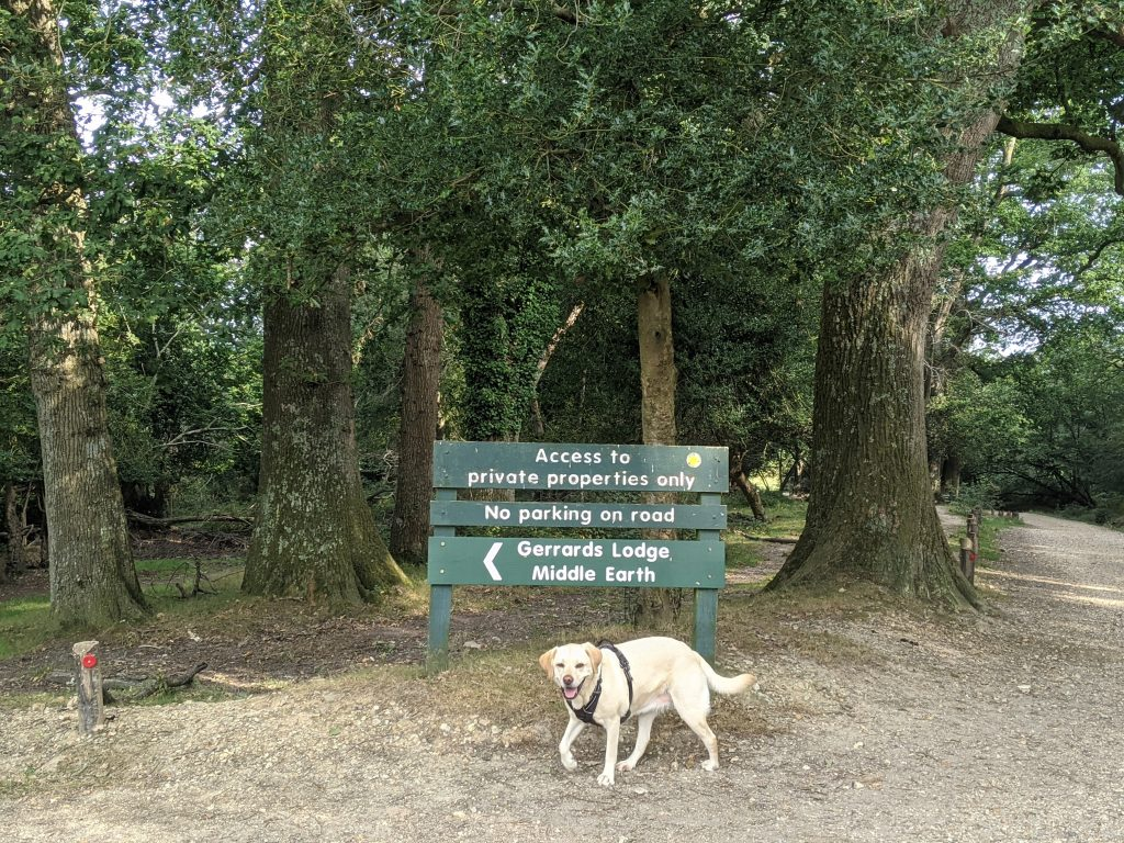 """Dog in front of sign pointing direction to """"middle earth"""""""